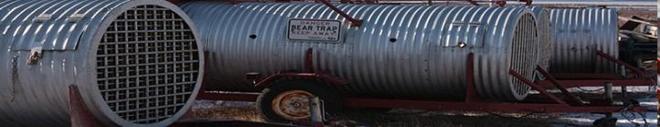 ursi-polari-02